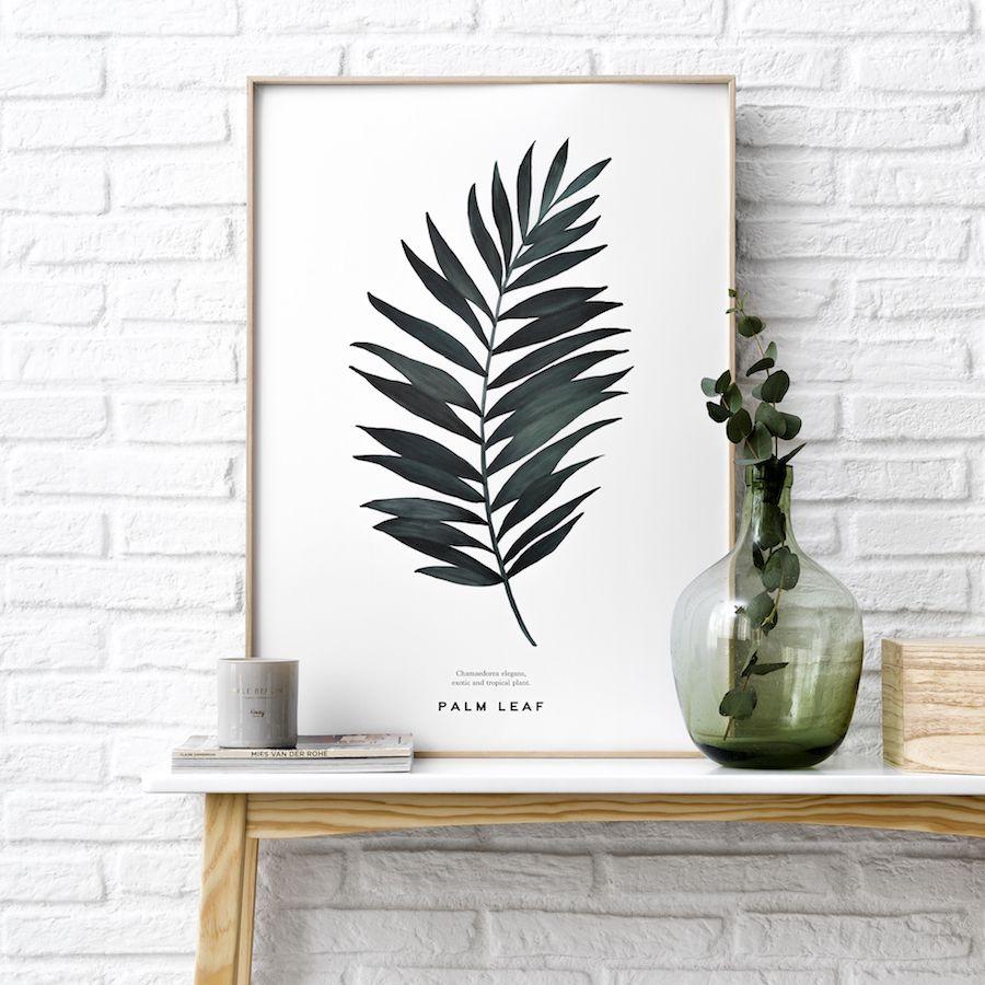 Natura Palms poster