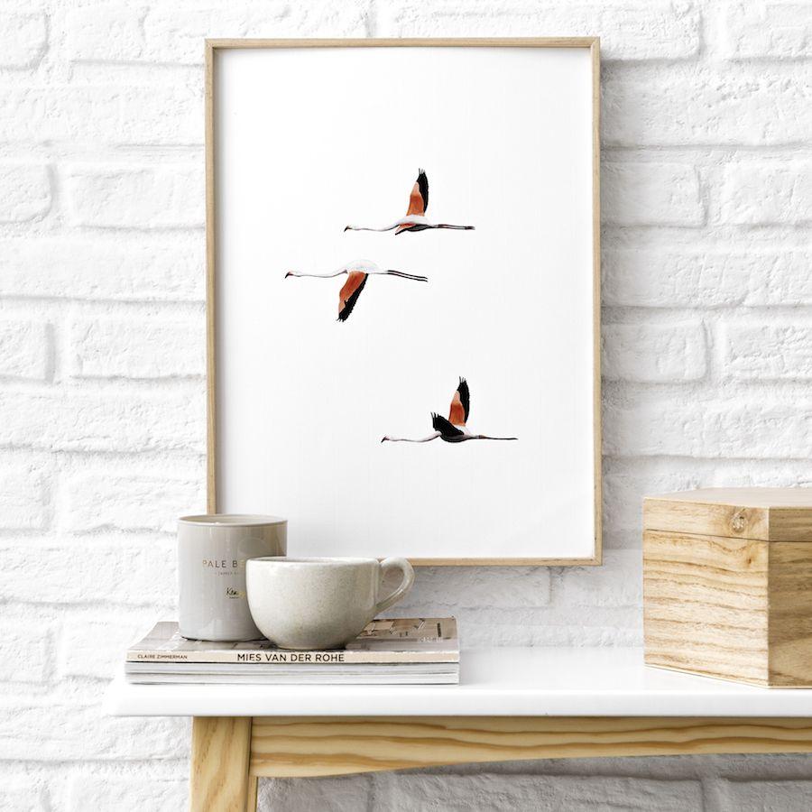 Natura bird lámina 21x30 cm