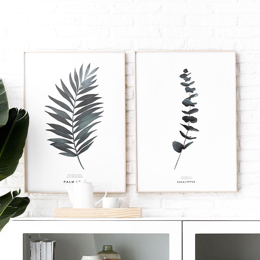 Natura Palm lámina 50x70 cm