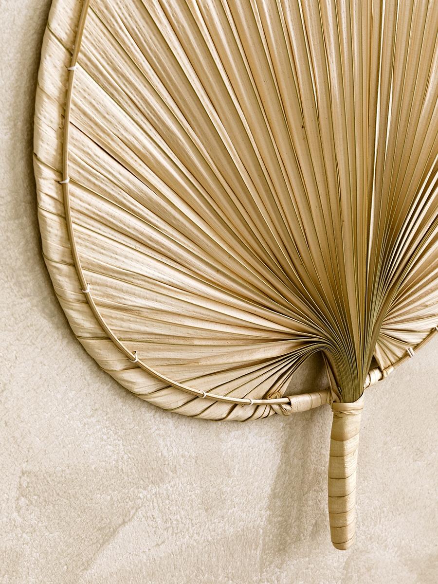 Palm abanico grande