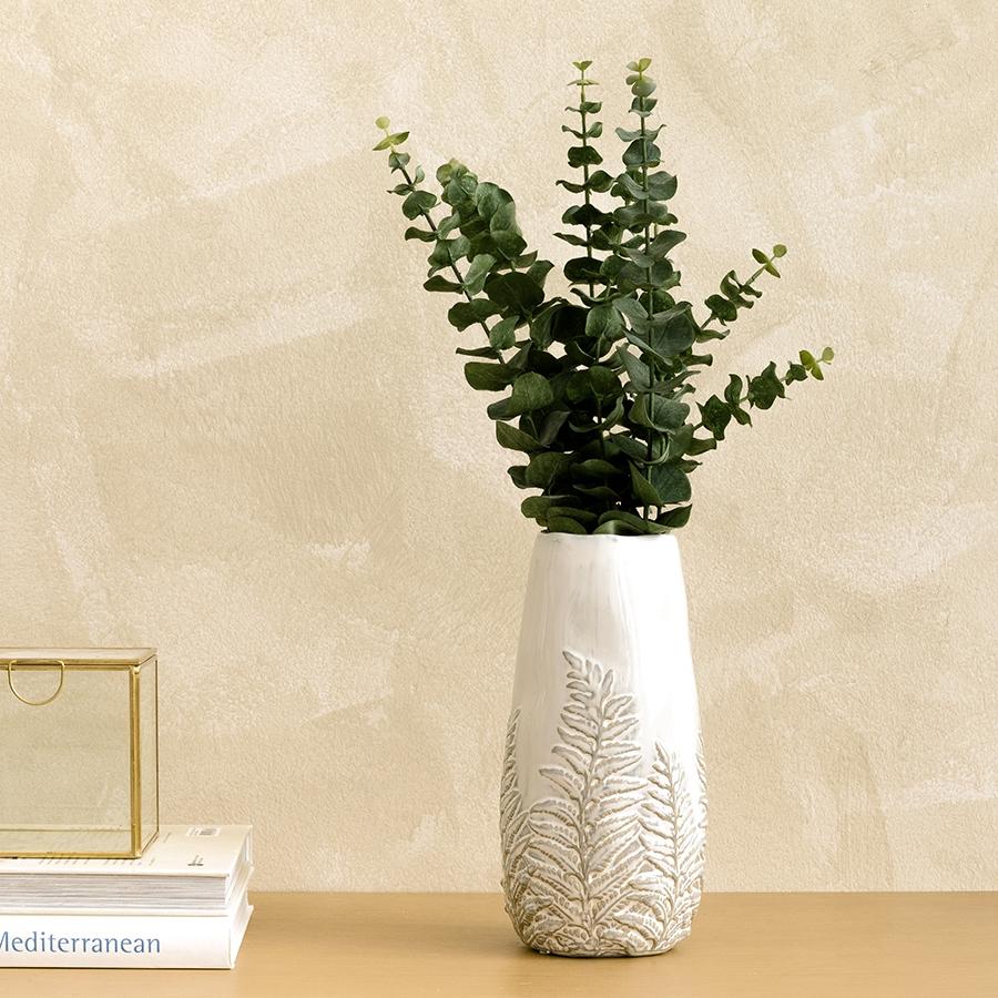 Eucalyptus ooreka 72