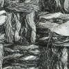 Chapi gris